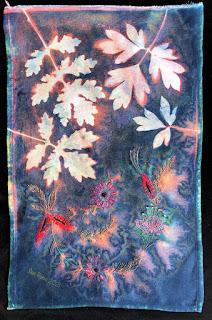 Sue Reno_wet cyanotype_Image 868