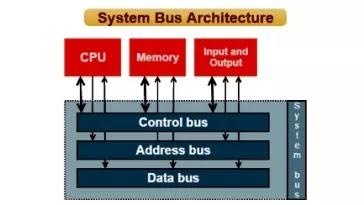 कंप्यूटर बस ( System BUS ) क्या होती है। बस के प्रकार ( Types of BUS ) किते होते हैं। आंतरिक बस, बाह्य बस क्या है।