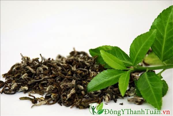 Bài thuốc chữa viêm họng bằng trà xanh