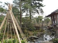Ropes winter protection along a stream - Kenroku-en Garden, Kanazawa, Japan