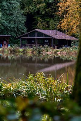 Wäller Tour Iserbachschleife | Wandern im Westerwald 12
