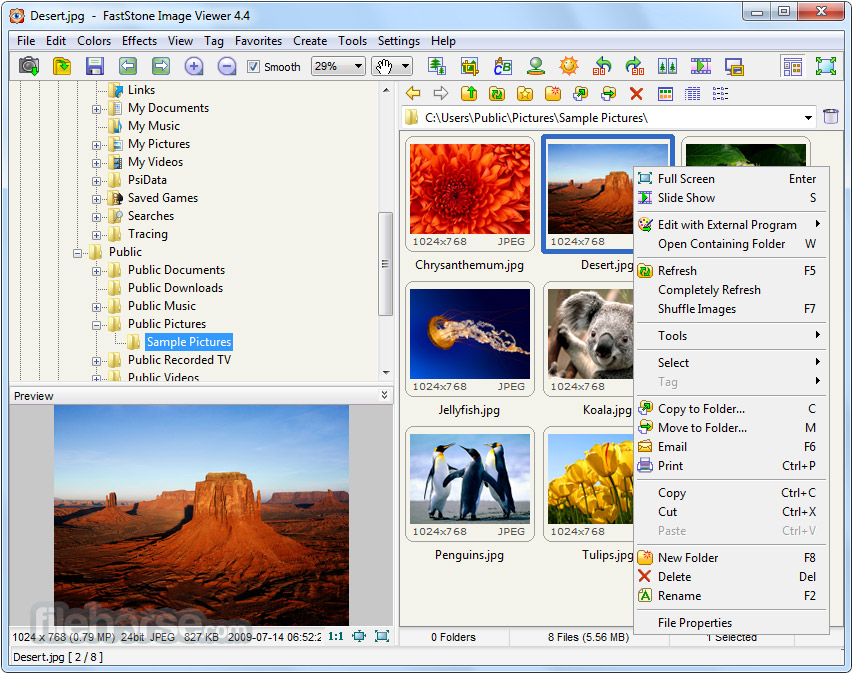 FastStone Image Viewer 4.8 Free Download ~ True Fonts