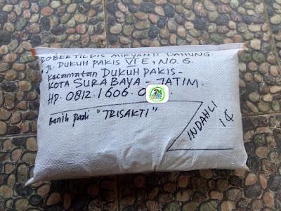 Benih pesanan ROBERTILDIS Surabaya, Jatim.   (Setelah Packing)