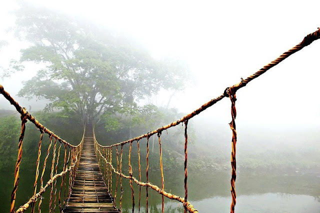 Wooden bridge in Sa Pa accidentally famous throughout the world