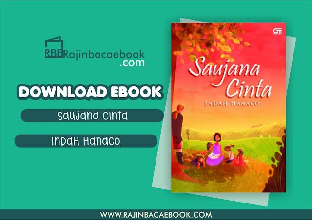 Download Novel Saujana Cinta by Indah Hanaco Pdf