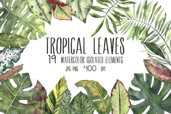 Tropical Leaves Graphics