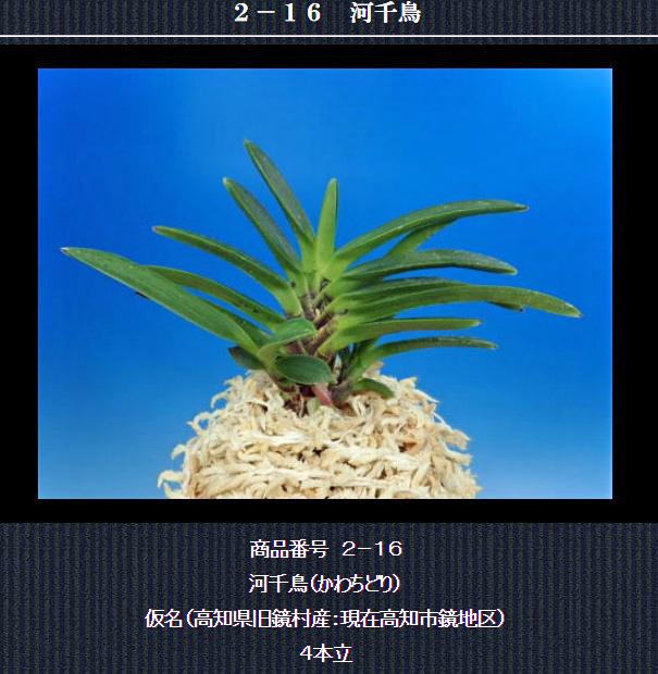 http://www.fuuran.jp/2-16html