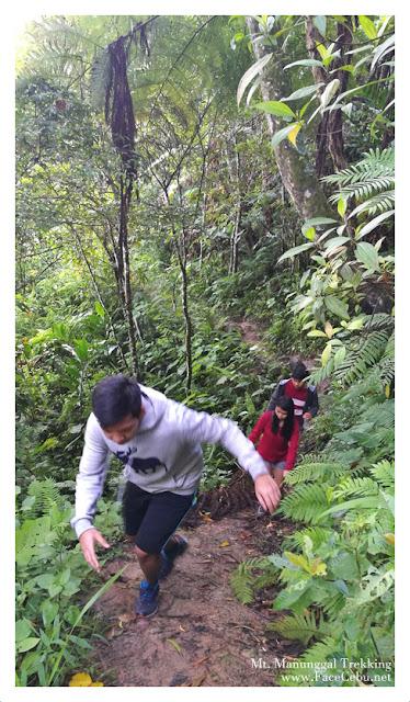 Mt Manunggal Trek Cebu