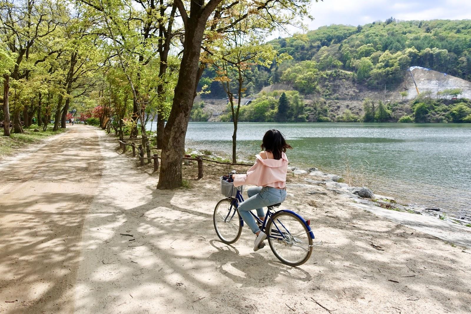 Nami Island day trip Korea