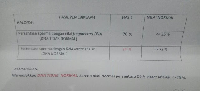 Contoh HALO Test / DFI (DNA Fregmentation Index)