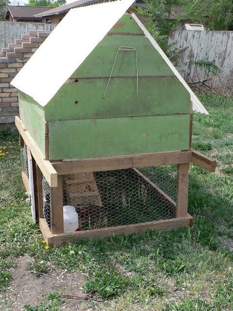 DIY Chicken Coop plans