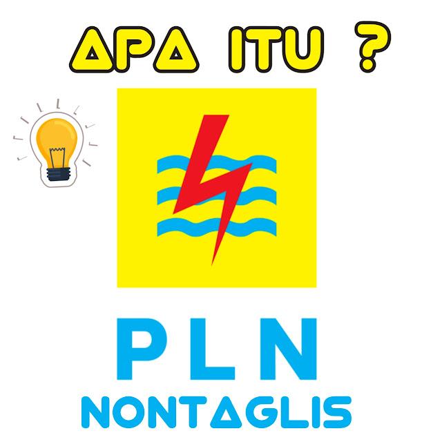 apa itu PLN NONTAGLIS ?