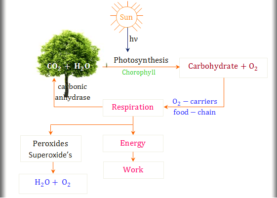 Importance of environmental chemistry