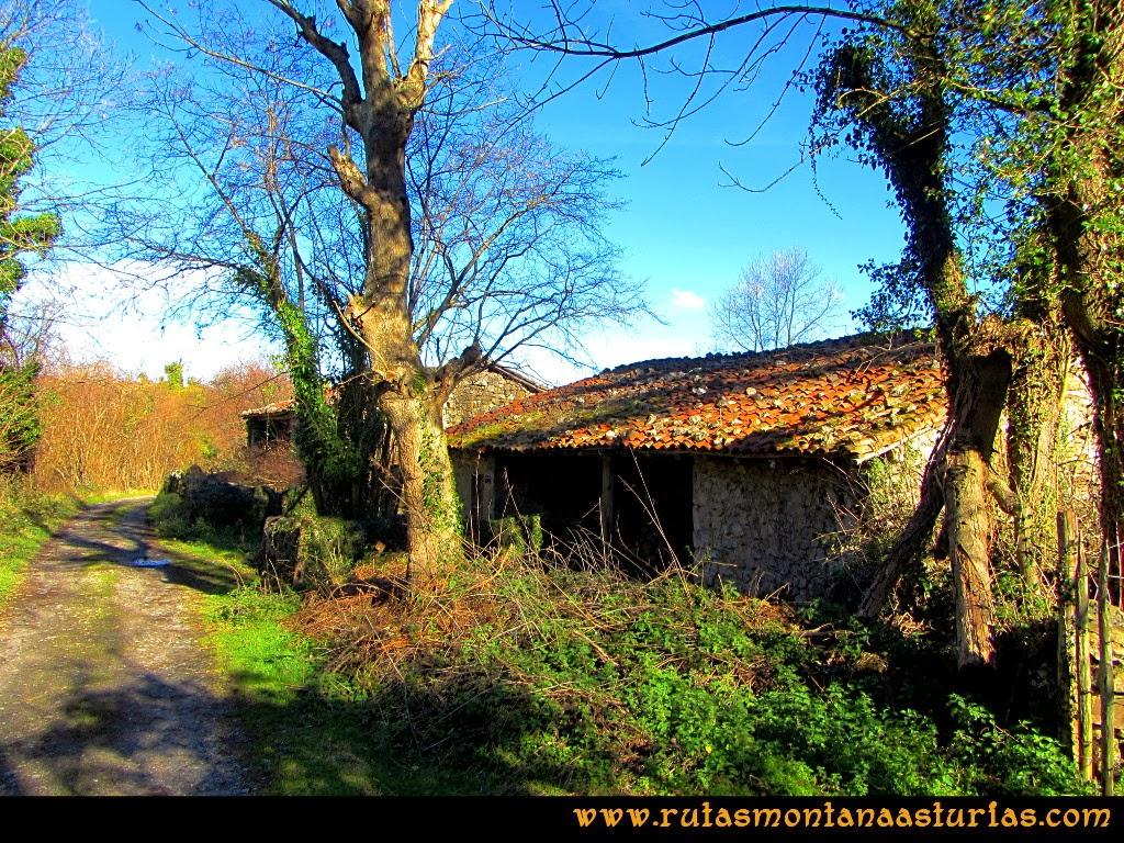 Rutas Montaña Asturias: Linda la Faya