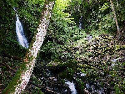 梅雨明け直後のワサビ大滝。