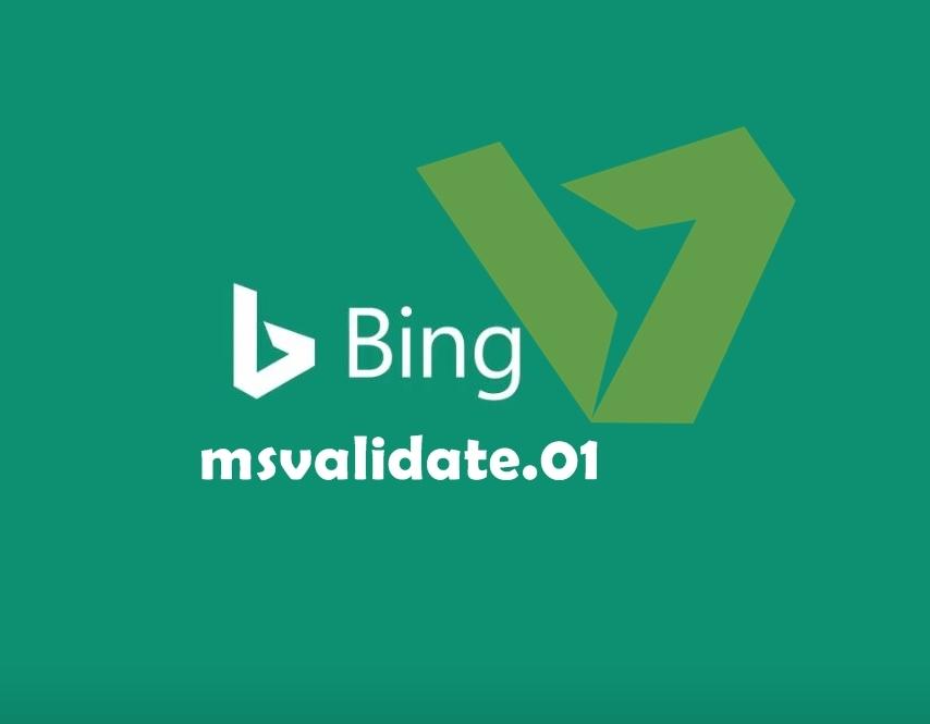 Memasang bing meta tag
