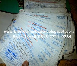 http://1.bp.blogspot.com/-sOugH5UIsoM/U7Ux1NolfWI/AAAAAAAADWc/1ZvXOfNsot0/s1600/bibitdurianbawor5.jpg