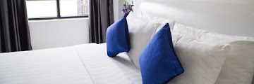 How to Remove Bed Bug Blood Stains from Mattress and Beddings