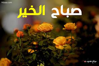 صباح الخير, صباح الورد, صباح الفل, صور صباح الخير