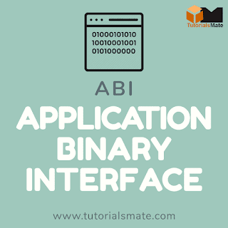 Full Form ABI - Application Binary Interface