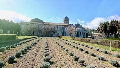 Monastère de Saint Paul Mausole Saint rémy de Provence