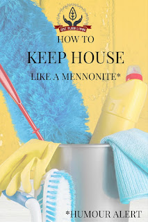 Country Fair Blog Party Blue Ribbon Winner: Just Plain Living's How to Keep House Like A Mennonite
