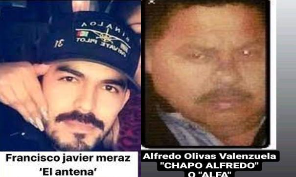 """Cuando sus Sicarios caían uno a uno por Militares """"El Antea"""" huye cobardemente es quien le sirve fielmente a El Chapo Alfredo"""