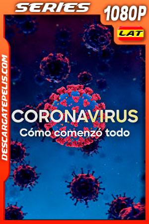 Coronavirus Como Comenzo Todo (2020) 1080P WEB-DL