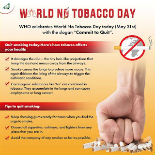 World No Tobacco Day 2021 Date History Theme Significance In Hindi