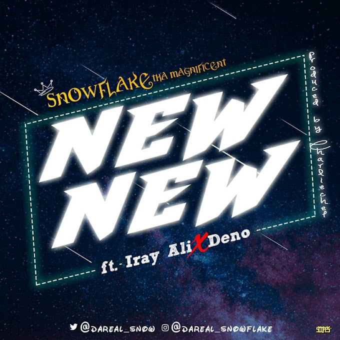 Snowflake New New ft Iray Ali X Demo