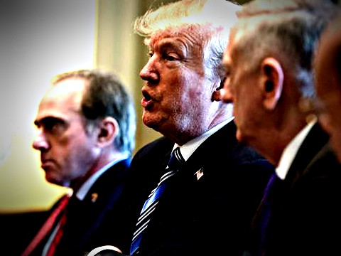 President Trump speaks beside Secretary of Veterans Affairs David Shulkin, left, and other members of his Cabinet during a meeting at the White House