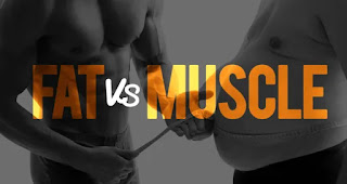 Muscle Weight Vs  Fat Weight