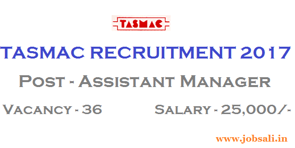 Assistant Manager jobs, CA Intermediate Jobs, Contract basis jobs in Tamilnadu