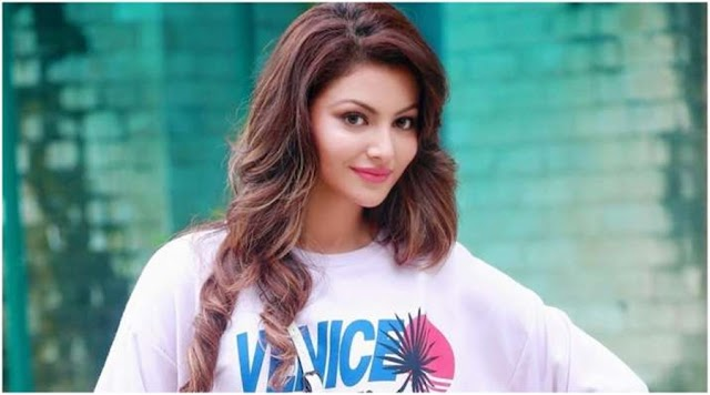 Urvashi Rautela Filmography, Roles, Verdict (Hit / Flop), Box Office Collection, And Others