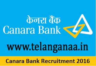 Canara Bank Recruitment 2016-2017 For Freshers Apply
