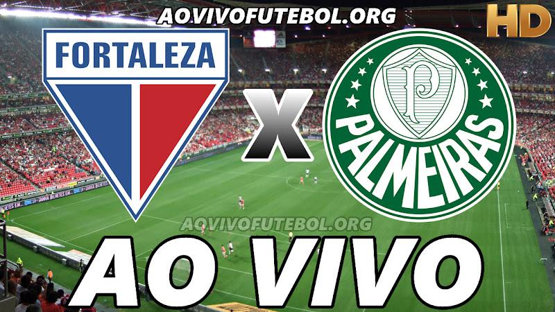 Fortaleza x Palmeiras Ao Vivo na TV HD