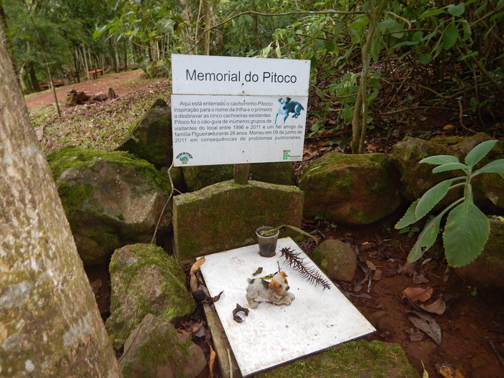 Trilha do Pitoco em Chapecó