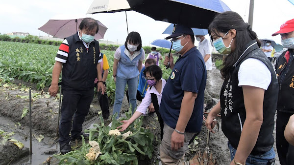 彰化雨災農損破661萬 王惠美勘災提醒農民拍照存證