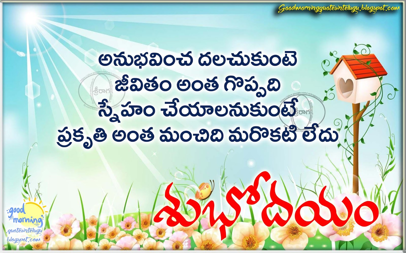 Best Telugu Life Quotes With Good Morning Messages Sms Good