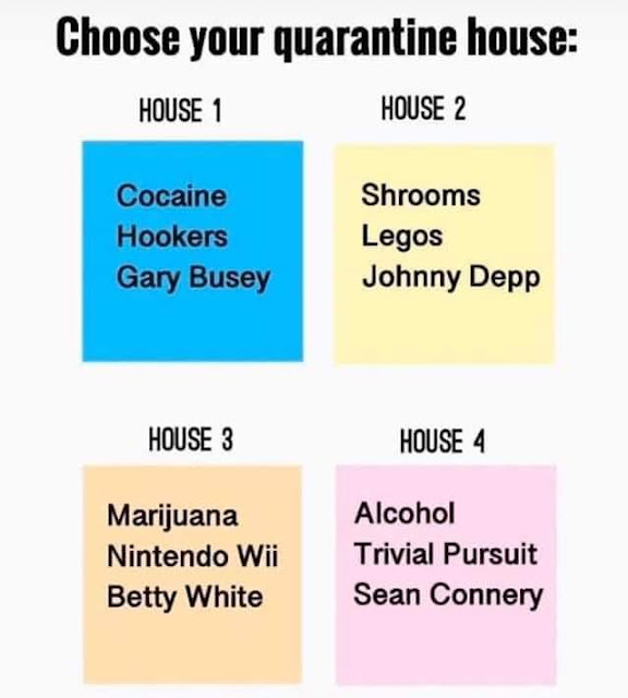 Choose your house,,,