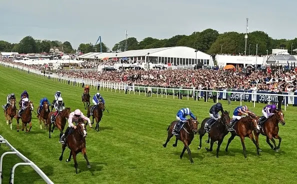 Horse Racing Surrey (England)