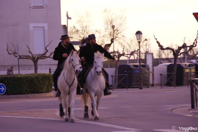 L'abrivado in occasione del Capodanno a Les Saintes Maries de la Mer