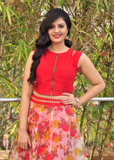 Sreemukhi in Long Skirt and Crop Top