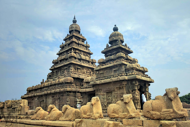 To tell the tales of the past, Shore temple remains as the last living Pagodas of Pallavas