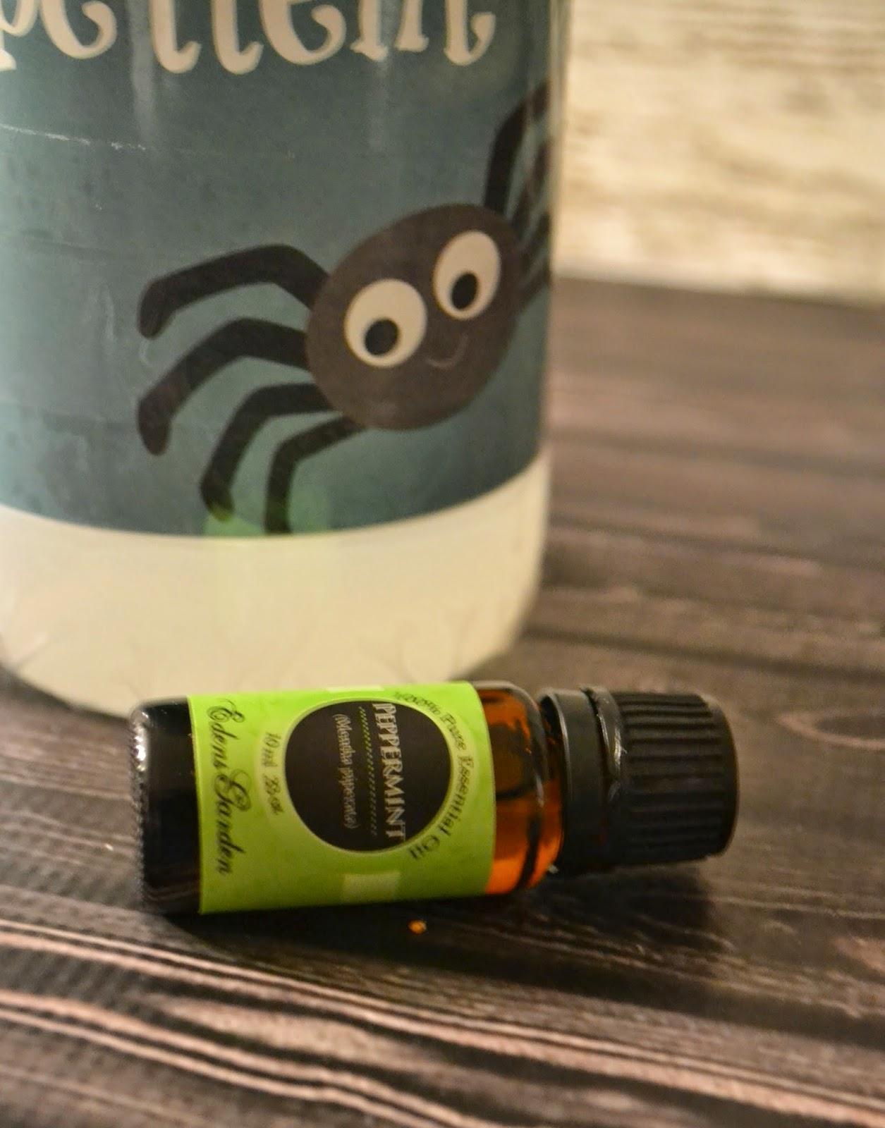 Homemade Spider Repellent #DIY.  DIY Spider Repellent.  Homemade Spider spray. Homemade Non-Toxic Spider Repellent #DIY.  All natural spider repellent.  All natural spider spray. Peppermint spider spray.  Peppermint oil uses.