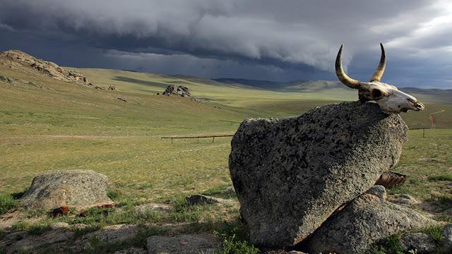 El cambio climático puede 'despertar' el ántrax de los cementerios del Ártico y Siberia