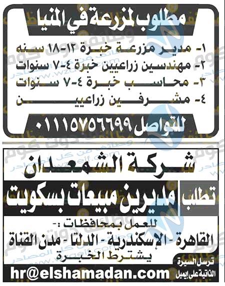 وظائف اهرام الجمعة 16-10-2020 وظائف جريدة الاهرام الاسبوعى 16 اكتوبر2020-وظائف دوت كوم
