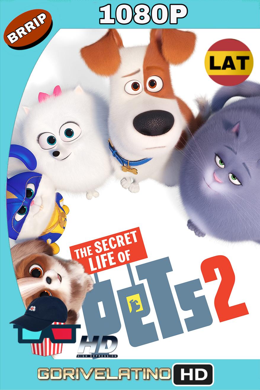 La Vida Secreta de tus Mascotas 2 (2019) BRRip 1080p (Latino-Inglés) MKV