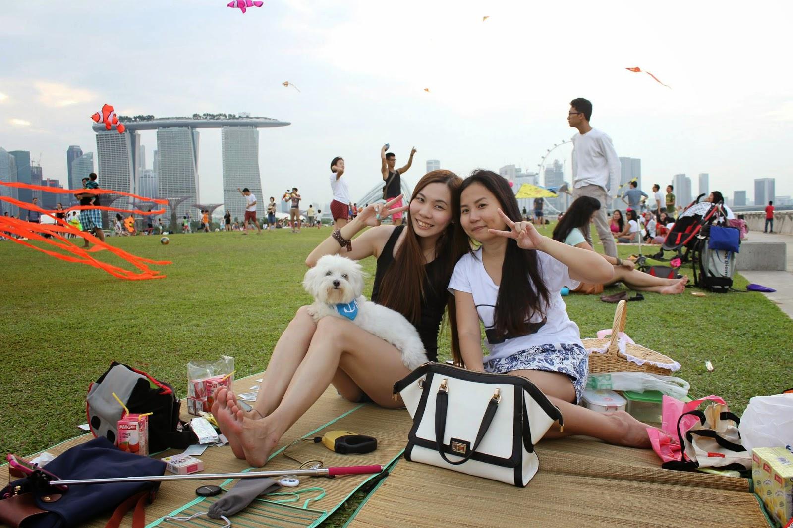 Yuriko's Illusive Dreamss ♥: Picnic + Kiteflying at Marina ...