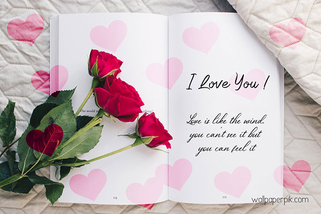 i love you image love quote image